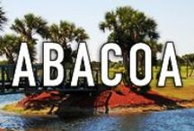 ABACOA / Abacoa is a home community found in the northern Palm Beach County city of Jupiter, FL. The homes here are DiVosta built masterpieces that offer the perfect south Florida location with direct access to I95 and close proximity to the Atlantic Ocean. THIS IS A SPAM-FREE ZONE! PLEASE STAY ON CONTENT AND BE COURTEOUS. IF YOU WOULD LIKE TO JOIN THIS BOARD, PLEASE LEAVE A COMMENT ON A PIN. #abacoa  #jupiterfl http://www.jupiterabacoahomes.us/