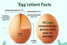 "Food: ""EGG"" cellent Facts / by Irene Kusters Berney"