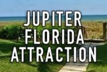 JUPITER FLORIDA ATTRACTIONS / The South Florida town of Jupiter is a truly fabulous place to live, work, and play. Its residents enjoy a very active lifestyle with so much to offer. This board is designed to highlight all the attractions that the Jupiter Florida area has to offer! #JupiterFlorida http://www.waterfront-properties.com/jupiterrealestate.php