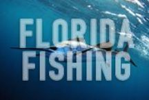 FLORIDA FISHING / Florida is a pristine warm and tropical waterfront paradise with an abundance of very desirable fishing opportunities. We love fishing in Florida and this board is designed to showcase everything fishing related that this wonderful oasis has to offer. THIS IS A SPAM-FREE ZONE! PLEASE STAY ON CONTENT AND BE COURTEOUS. IF YOU WOULD LIKE TO JOIN THIS BOARD, PLEASE LEAVE A COMMENT ON A PIN. #Florida #Fishing http://www.waterfront-properties.com/palmbeachhighlandbeachrealestate.php