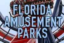 FLORIDA AMUSEMENT PARKS / The Florida area is a truly wonderful place to live, work, and play. It is full of outstanding amusement parks and attractions that will fulfill all your desires. THIS IS A SPAM-FREE ZONE! PLEASE STAY ON CONTENT AND BE COURTEOUS. IF YOU WOULD LIKE TO JOIN THIS BOARD, PLEASE LEAVE A COMMENT ON A PIN. #florida #thingstodo #funinflorida http://www.waterfront-properties.com/
