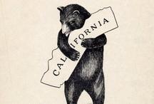 California / This is my home / by Stephanie McCann