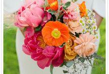 Flowers / by Julie Saunders