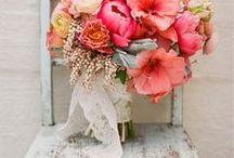 Weddings-Esküvők