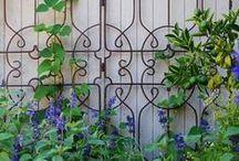 Garden fun! / by Brooke McKay