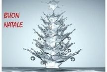 CRAZY CHRISTMAS !!