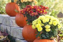 Thanksgiving & Halloween