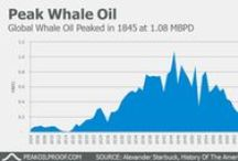 Peak Oil Charts / Charts about peak oil from peakoilproof.com
