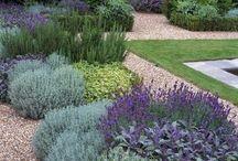 Gardening / by Susan Elizabeth Beattie
