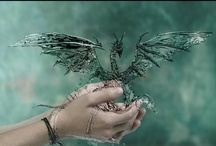 Fairy, Dragon, Enchanted  Love / I believe .... / by Michelle Martin