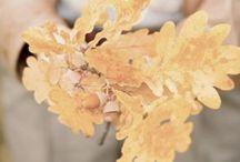 ★ Hello autumn ★