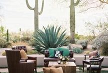 Desert Wedding / Hello! We are Beacon Lane. A small team who is passionate about perfecting the art of the invite! We design, print and hand craft affordable luxury wedding invitations, bridal shower cards, save the dates, wedding day of stationery, baby shower and special event paper goods. Below are some of our favorite Desert Cactus Wedding Trends!