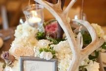 Wedding Ideas / by Kaylynn Rice