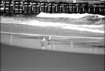 Virginia Beach! Take a Peak! / Virginia Beach