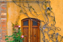 Door and window obsession
