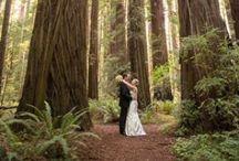 Weddings on the Redwood Coast