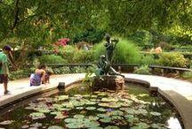 I Love New York - Central Park