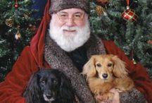 Get a Long Little Doggie!  / by Rose Vanden Eynden