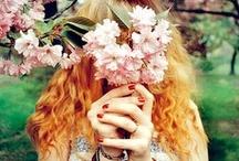 Beautiful World - Spring