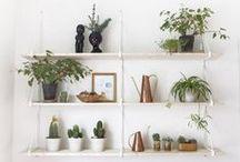 shelf style. / Chic storage ideas and shelf styling inspiration