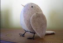 Feathered Friends / Birdies <3