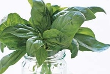Basil goes well with... / All things glorious that go well with basil.