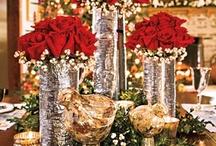 Christmas Decor / by Mignonne Hubina