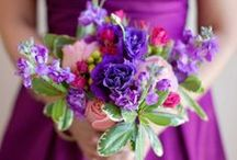 Wedding color: Purple / by Lizzy A.