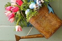 Spring & Easter / by Mary | Sweet Little Bluebird
