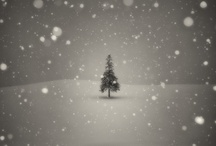 Winter Wonderland / by Laurie Brinegar