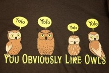 yolo / You obviously like owls / by Cattymoomoos