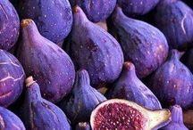Color. Purple / Purple, aubergine, lilac shades