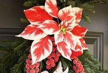 Florals & Decor: Holiday / floral decor for Holiday / by Ali G