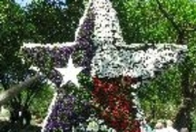 THINGS TO DO IN DALLAS / I'm a Texas girl, born and raised in the DFW area... Here are worthwhile things to do in Dallas, Arlington, and Fort Worth. jessconnell.com