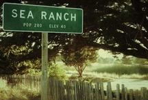 Sea Ranch
