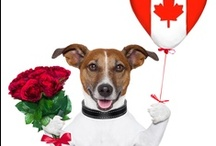 Mother's Day in Canada for 2013 is May 12th