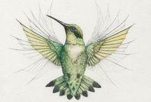 Aviary / #Birds / by Christopher Bentley