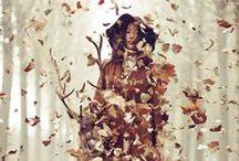 change in season | autumn / by kyla