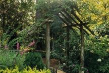 Garden / by April Golden