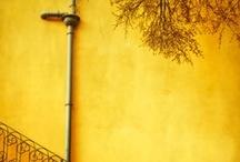 ✭ Yellow ✭