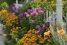 Gardening / I love gardening. So relaxing!
