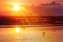 Sunset/Sunrise / by Cat Man Du