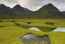 Scotland / by Cat Man Du