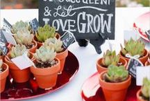 Wedding favours (for the guests to take home)