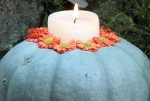 Celebrate the Season: Halloween / by Flo & Grace