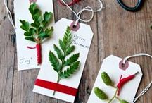Seasonal Inspiration / Pins from our editors of activities, decoration, and fun ideas the whole family can enjoy.