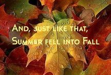 """autumn / """"Even if something is left undone, everyone must take time to sit still and watch the leaves turn..."""" Elizabeth Lawrence"""