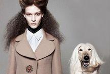 Fashion / by Svetlana Barker