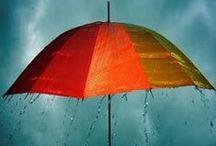 Rain-Drops / by AW
