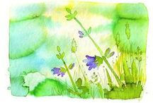 WaterColors / by AW